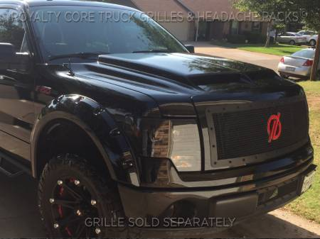 Royalty Core - Ford F-150 2009-2012 RCR Race Line Grille - Image 5